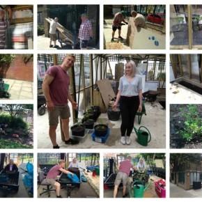Clearing, Riddling, Digging & Planting