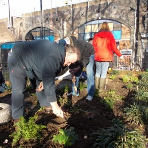 Green Creations planting day
