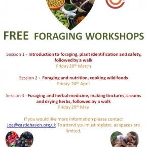 FREE Foraging workshops