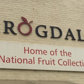 Ageactivity 60+ coach trip to Brogdale Collections
