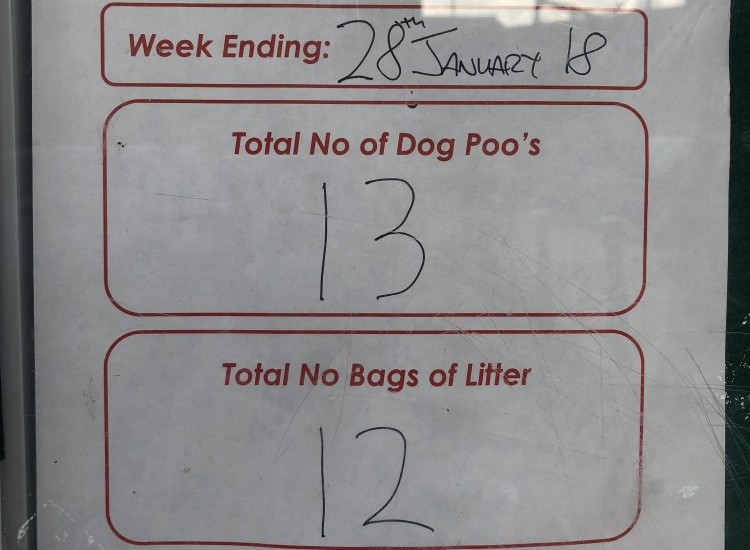How we're tackling dog fouling & litter