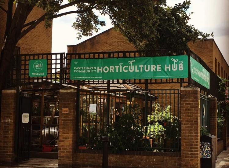 Horticulture Hub News